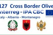 Progetto Interreg Cross Border Olive